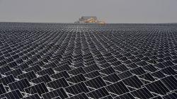 Stocks of JinkoSolar, JA Solar, Daqo, ReneSola Plunge on New Regulations by China