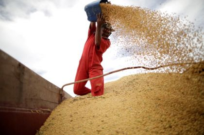 Exclusive: Sign of a Thaw? China Makes New Major Buy of U.S. Soybeans