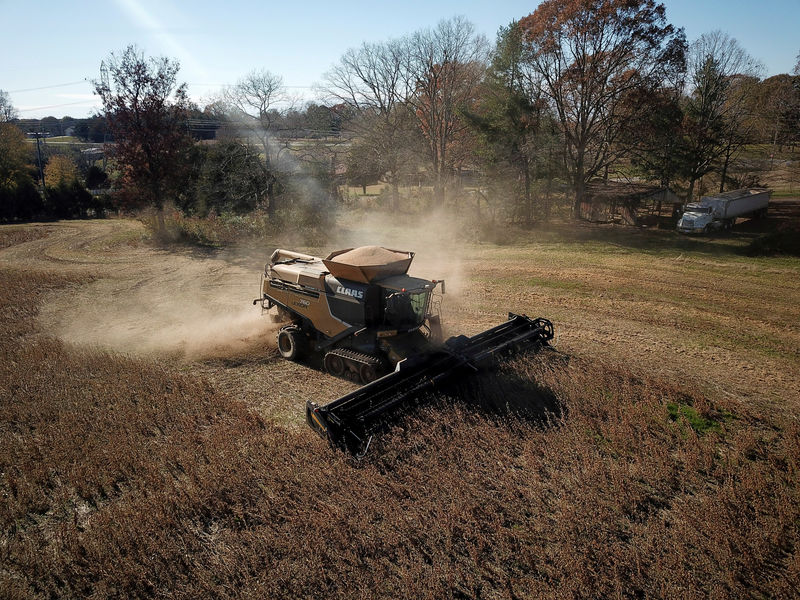 Exclusive: China Buys U.S. Soybeans a Day After Trade Talks