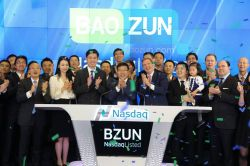 Baozun Stock Plummets 13% Despite Strong Q2 Results