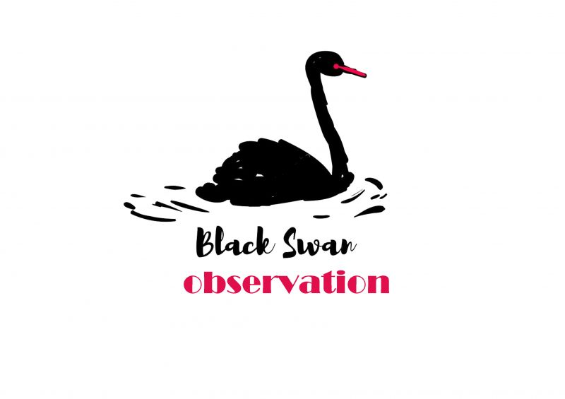 "OBSERVATION: The Big (China) Short vs the ""Black Swan"""
