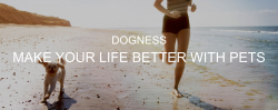 Dogness Heads for Australia, Eyes More Retail Channels; Stock Jumps 7%
