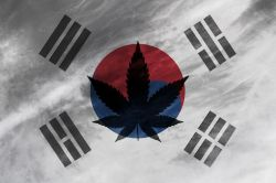 Bergman Buy Update: South Korea is Buying Weed and So Should You