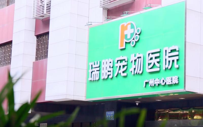 Ruipeng Pet Clinic Seeks New Funding Ahead of IPO