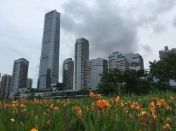 China's New Home Sales May Turn Positive by Year-end, Says Foresight Chief Analyst