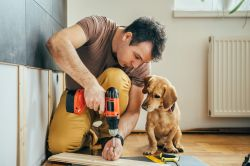 Should You Build Out Your Portfolio With These Home Improvement Stocks?