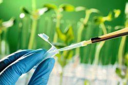 Origin Agritech Regains Compliance With Nasdaq's Minimum Market Value Requirement